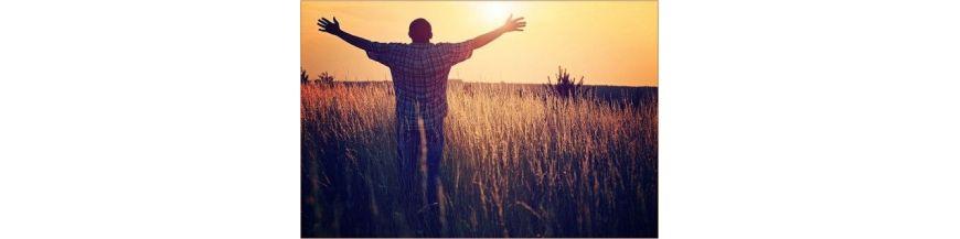 nous te chantons merci seigneur